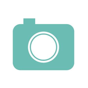 リサイクルショップ カメラ レンズ 買取